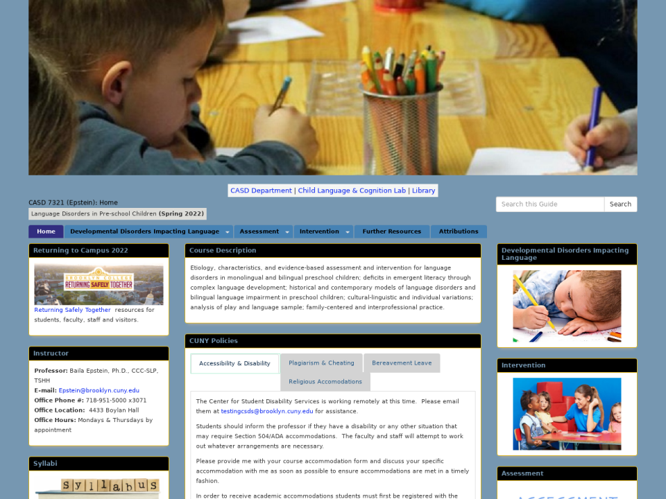 Homepage of CASD 7321 guide, click to go to guide.